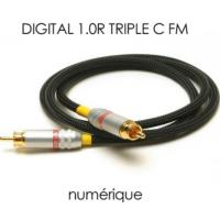 Acoustic Revive DIGITAL RCA